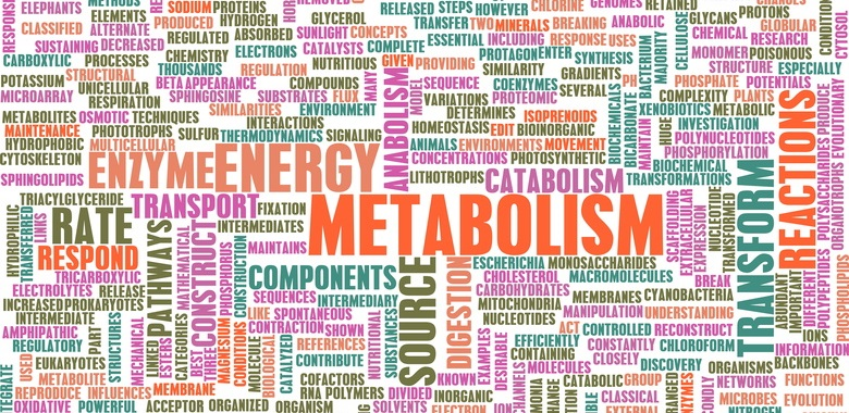 Metabolic therapy
